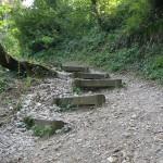 Trail am Gardasee (c) Laufschuhkauf.de