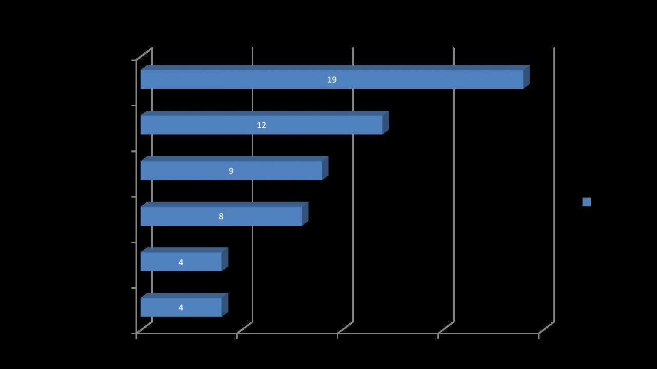 Top Five Natural Runningschuhe 2014  (c) Laufschuhkauf.de
