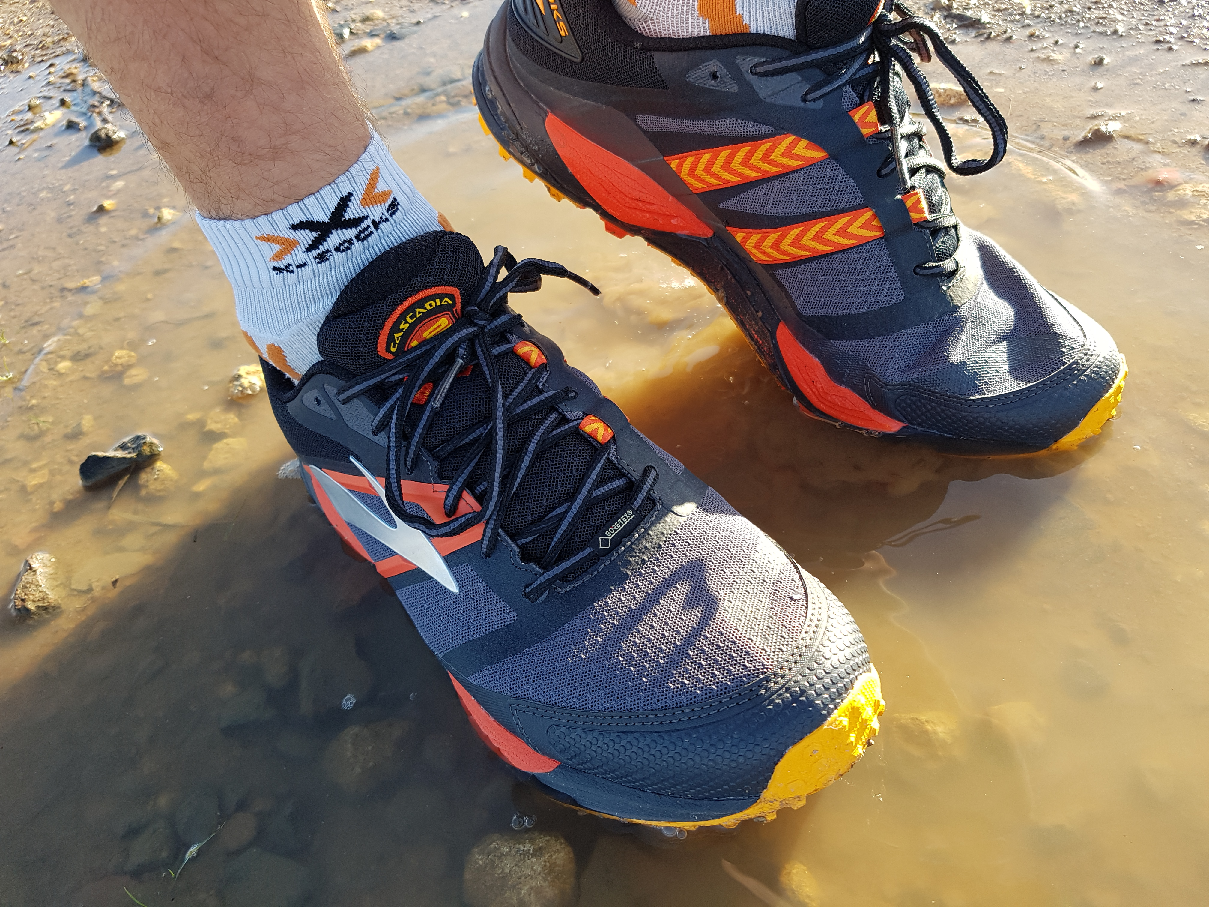 Laufschuhtest Brooks Cascadia 12 GTX Trailschuhe HW 2017